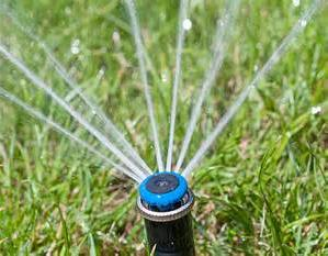 Rebates & Irrigation Audits